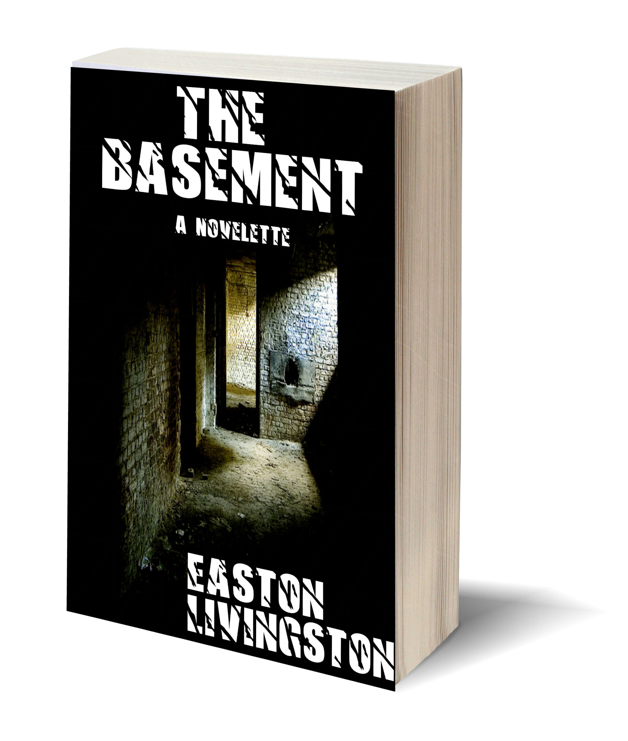 Project Update – The Basement